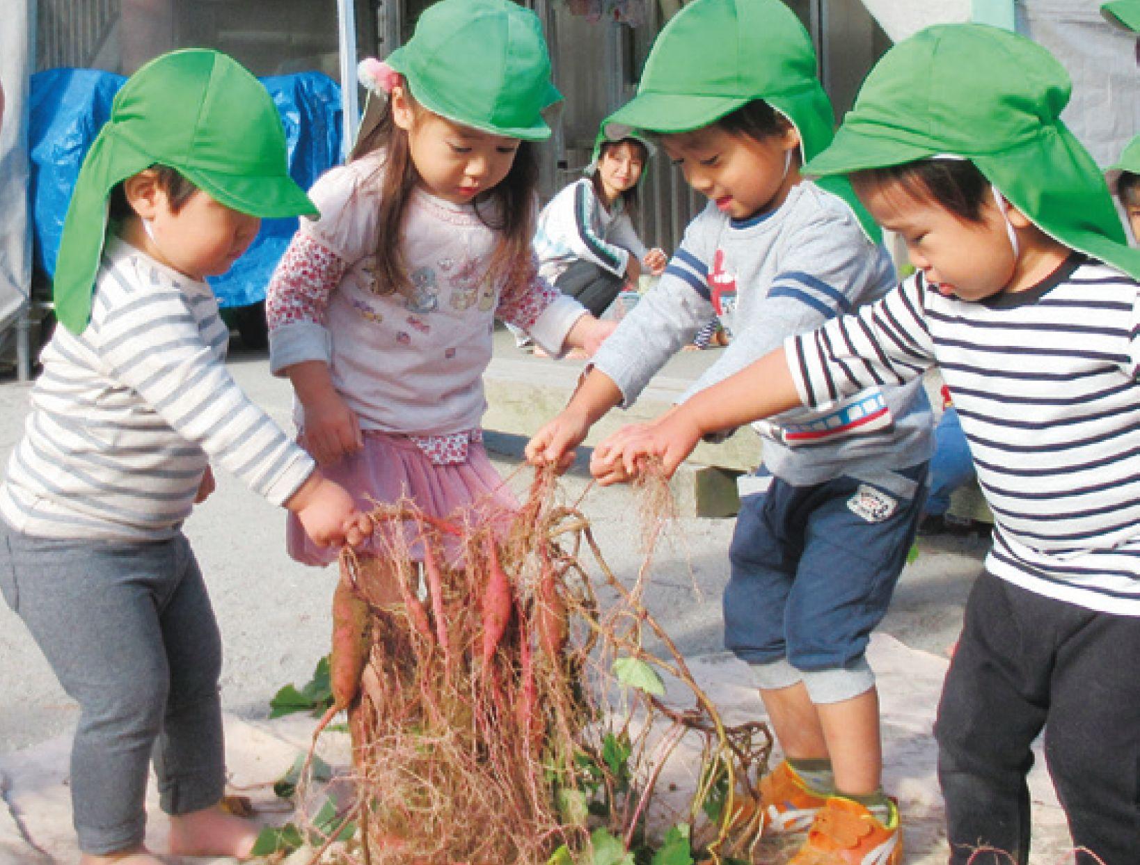 こばと・ゆなの木 こども園 児童